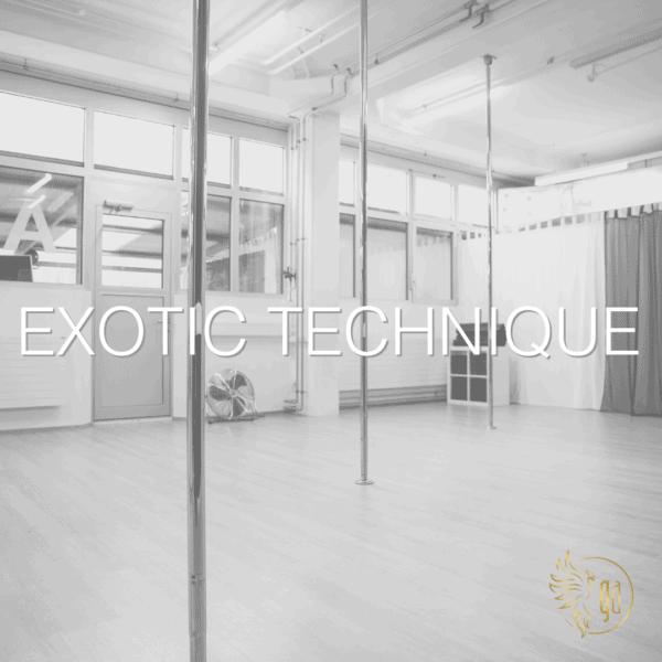 Exotic Technique poledance zürich