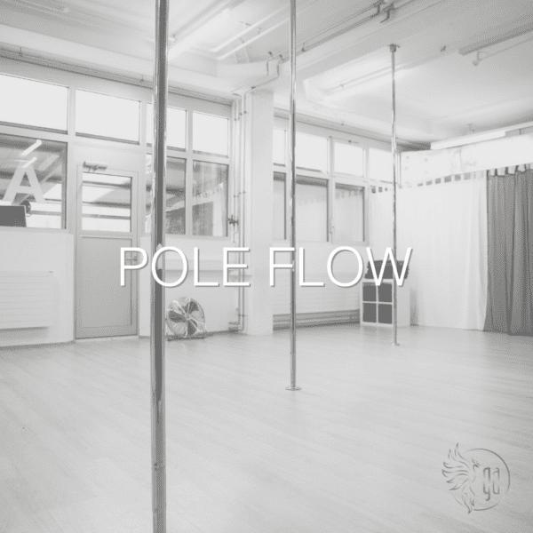 Pole Flow Zürich Poledance Kurs Zürich