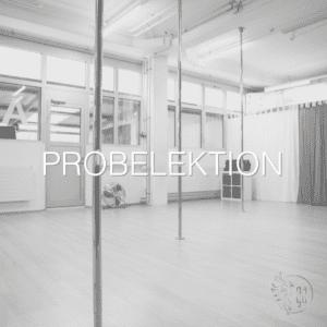 Probelektion Pole Dance Zürich
